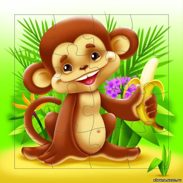 Днем, открытки обезьянками